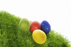 Easter eggs hiding in the grass Stock Photography