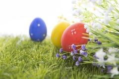 Easter eggs hiding in the grass Stock Photos