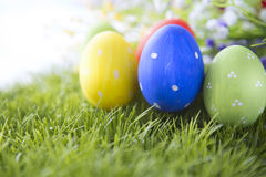 Easter eggs hiding in the grass Stock Photo