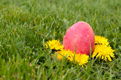 Easter eggs hunt Stock Photos