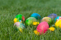 Easter Eggs Hunt Royalty Free Stock Images