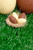 Easter eggs hunt detail Royalty Free Stock Images