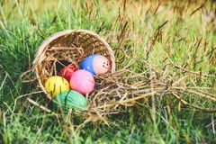 Easter eggs hunt on green grass outdoor Basket nest egg colorful decorated festive on meadow stock image