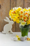 Easter eggs hunt. White rabbit with eggs and daffodil flowers stock images