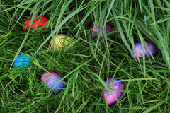 Easter Eggs Hunting Stock Photo