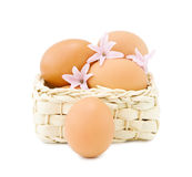 Easter eggs with hyacinth Royalty Free Stock Image