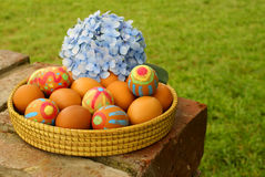 Easter eggs and hydrangea Royalty Free Stock Images