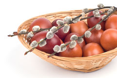Easter Eggs In A Basket Stock Images