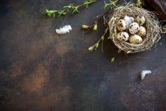 Free Easter Eggs In Nest Stock Photo - 108171270
