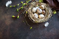 Free Easter Eggs In Nest Royalty Free Stock Photography - 108171837