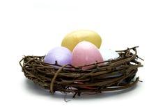 Easter - Eggs In Nest Stock Photo