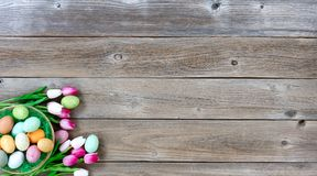 Easter eggs inside basket with tulips on lower left corner of we. Basket filled with colorful eggs and pink tulips in lower left corner on weathered wooden Stock Photos