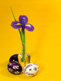 Easter eggs with iris Royalty Free Stock Photo