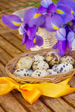 Easter eggs and irises Royalty Free Stock Photo
