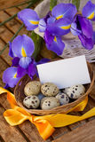 Easter eggs and irises with greeting card Stock Images