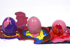 Easter eggs. Isolated white backgrounds Stock Image