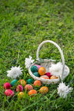 Easter eggs on lawn. White wicker basket with white flowers and colorful Easter eggs, some lying on the grass royalty free stock photography