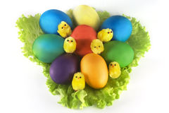 Easter eggs on leaves Royalty Free Stock Image