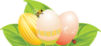 Easter eggs, leaves with ladybird and bee stock images
