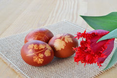 Easter eggs with leaves Stock Photo