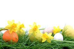 Easter eggs and lent lilies Stock Image