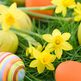 Easter eggs and lent lilies Royalty Free Stock Image