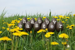 The Easter Eggs Royalty Free Stock Photography