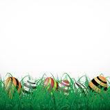 Easter eggs with lines in grass on a white shining background Royalty Free Stock Image