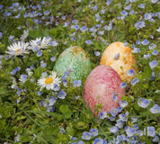 Easter eggs in meadow. Three colorful painted Easter eggs in flowery meadow Stock Photo