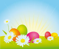 Easter eggs on meadow Royalty Free Stock Image