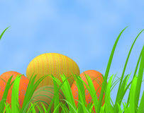 Easter Eggs Means Green Grass And Pasture Royalty Free Stock Photo
