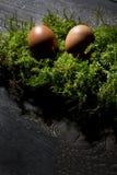 Easter eggs on moss, Easter nest Royalty Free Stock Photo