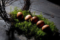 Easter eggs on moss, Easter nest Royalty Free Stock Photography