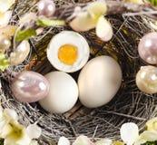 Easter eggs. Easter motive. White Easter Bunny Stock Photography