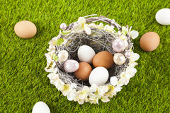 Easter eggs. Easter motive. White Easter Bunny Royalty Free Stock Photography