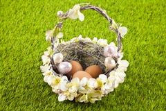Easter eggs. Easter motive. White Easter Bunny Stock Image