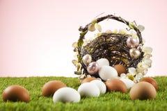 Easter eggs. Easter motive. White Easter Bunny Stock Images