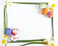 Easter eggs and Narcissus stock photos