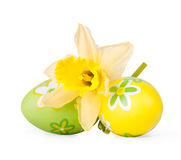 Easter eggs with narcissus flower Royalty Free Stock Images