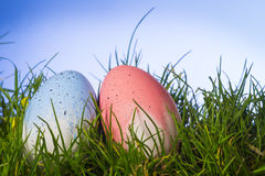 Easter eggs on natural grass, Royalty Free Stock Image