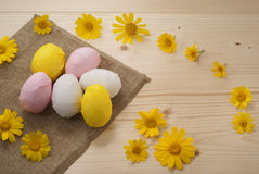 Easter eggs. On natural wood Royalty Free Stock Image