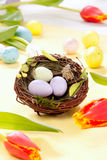 Easter eggs in nest. Easter Painted Colorful eggs in birds nest decorated with spring tulips on a pastel background Stock Images
