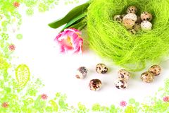 Easter eggs in the nest Stock Image