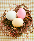 Easter Eggs In A Nest. Three boiled dyed Easter Eggs in a nest for happy easter Royalty Free Stock Images
