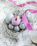 Easter Eggs In A Nest. Speckled blue Easter Eggs in a nest on feathers with one single pink one and a pink ribbon Stock Photography