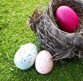 Easter Eggs in Nest Stock Image
