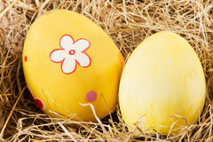 Easter eggs in a nest Stock Photos