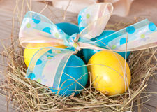 Easter eggs in nest Royalty Free Stock Photo