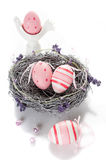 Easter eggs in a nest Royalty Free Stock Image