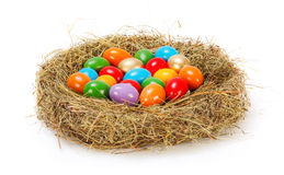 Easter eggs in nest Royalty Free Stock Images